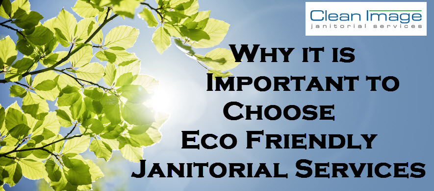 How to Tell if Janitorial Services are Eco Friendly